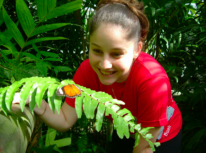 Kuranda-butterfly Sanctuary